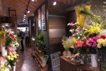 花カフェ トラジェ 写真5
